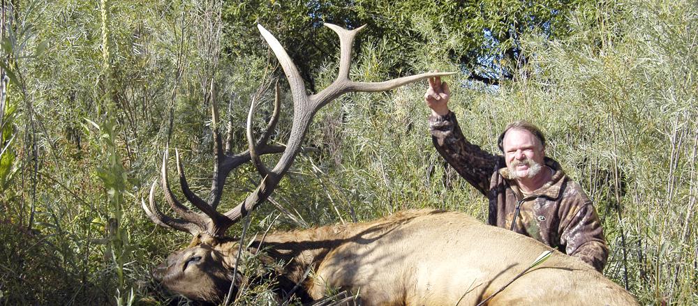 streater-elk-cropped